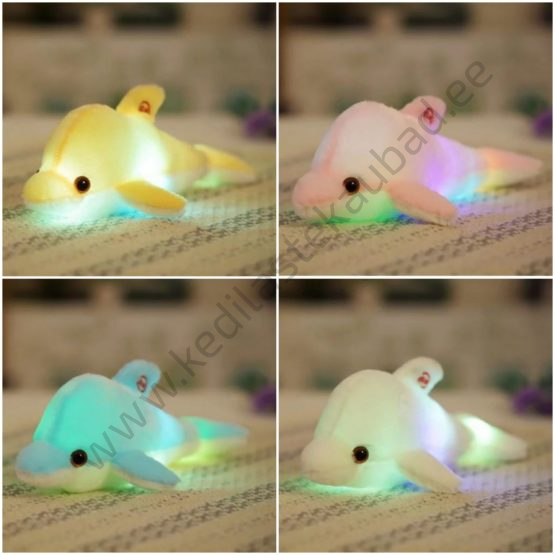 LED-valgustusega delfiin